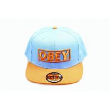 Кепка OBEY Голубой