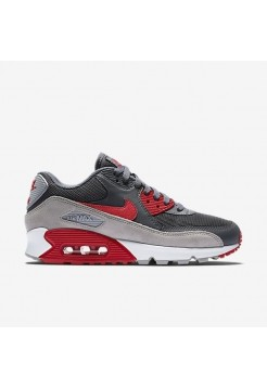 Кроссовки Nike Air Max 90 Grey Red (Е211)